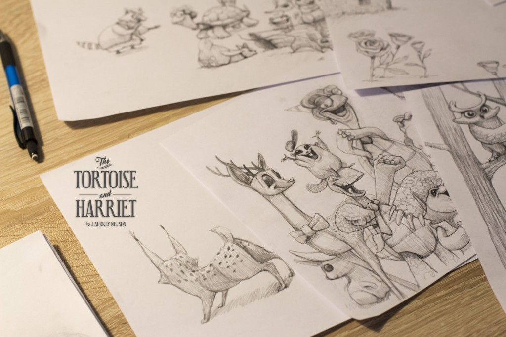 "Imagen del video del libro ""The Tortoise and Harriet"" para Dulk por Carlos Lorenzo filmmaker"